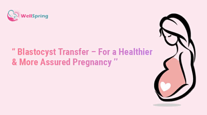 Blastocyst Transfer – For a Healthier & More Assured Pregnancy