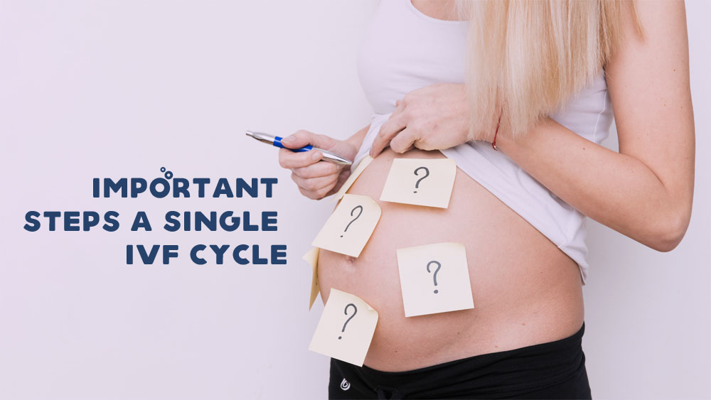 6 Important Steps of a Single IVF Cycle